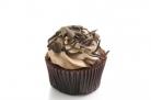 choc.cupcake